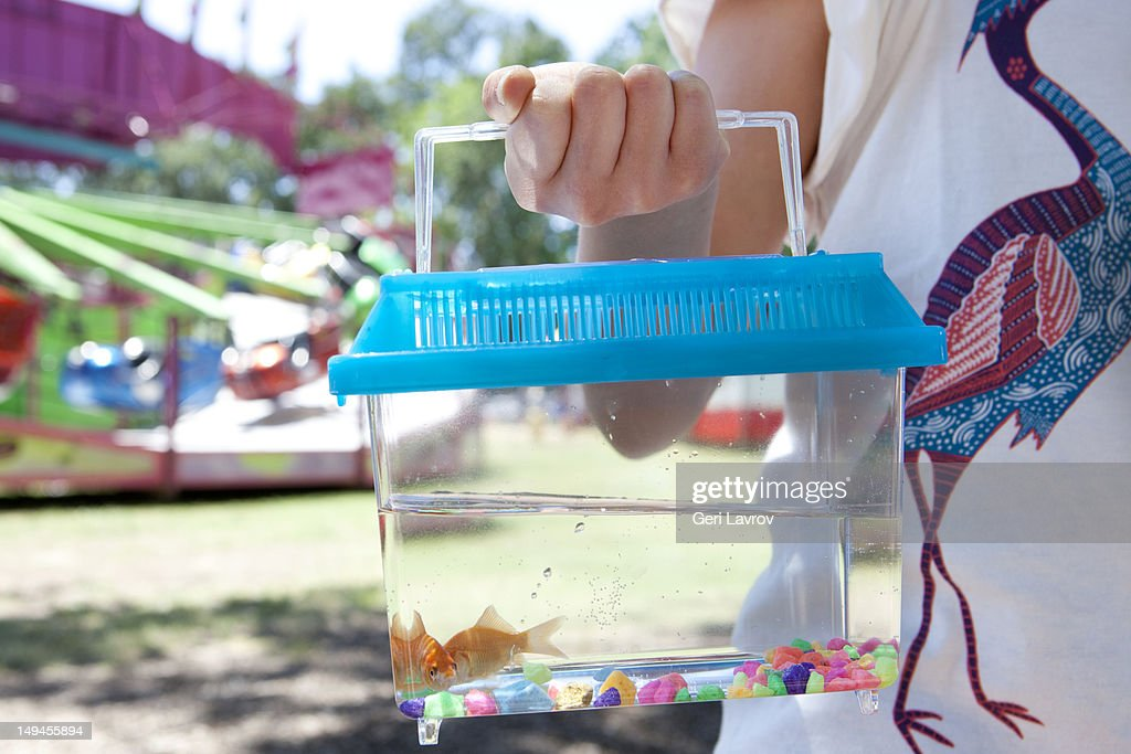 Child holding tank of goldfish : Stock Photo