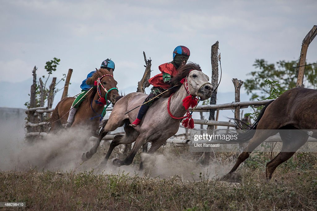 Child jockeys compete in the traditional horse races as part of Moyo festival on September 15 2015 in Sumbawa Island West Nusa Tenggara Indonesia...