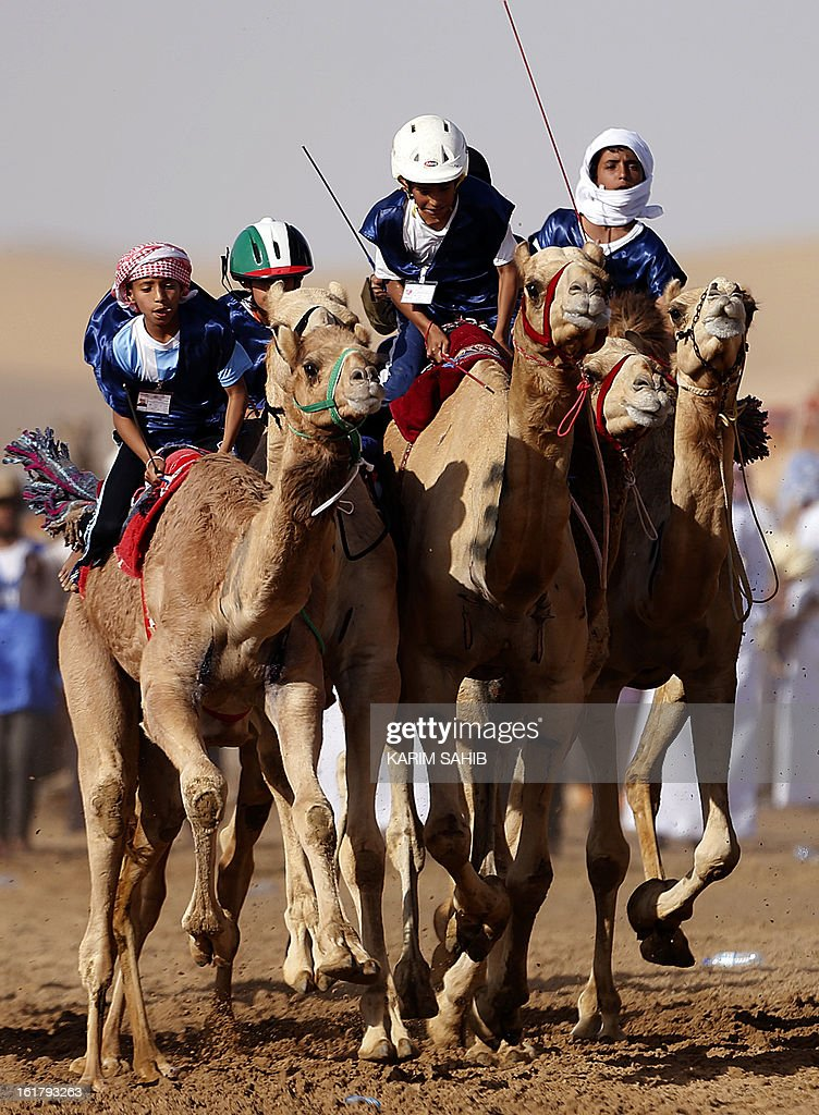 Child jockeys take the start of a traditional camel race during the Sheikh Sultan Bin Zayed al-Nahyan Camel Festival, held at the Shweihan racecourse, in the outskirts of Abu Dhabi on February 16, 2013.