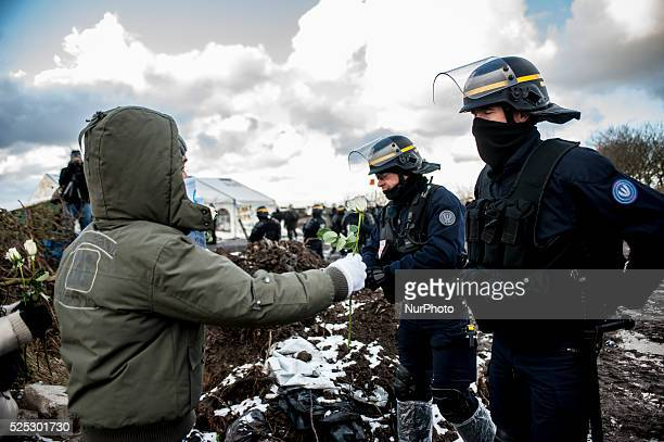 A child offers a flower as a sign of peace and non violence during a protest against the dismantling of the southern part of quotJunglequot migrant...