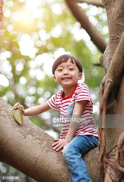 Child on a tree