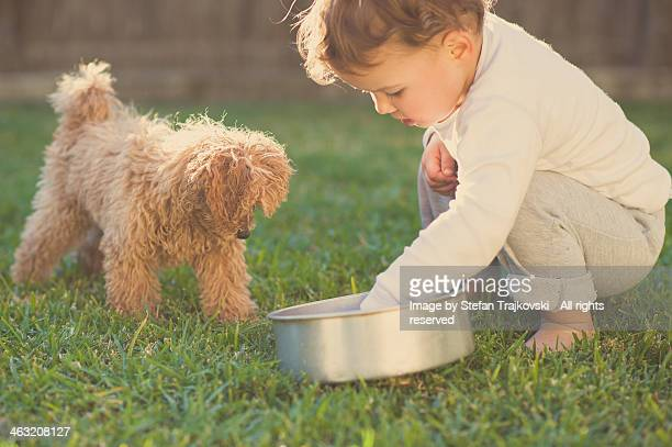 Child Playing With Furry Puppy