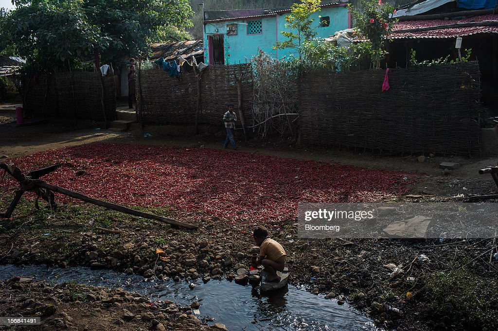 A child plays next to red chili peppers left out to dry in Bhilkhera village, Maharashtra, India, on Thursday, Nov. 15, 2012. The Indian economy will expand 4.9 percent in 2012, the least in a decade, according to the International Monetary Fund. Photographer: Sanjit Das/Bloomberg via Getty Images