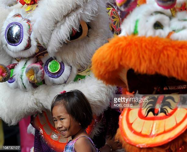 A child pose for a photo between Chinese lions in Chinatown ahead of the Chinese New Year in Manila on February 2 2011 2011 is the 'Year of the...