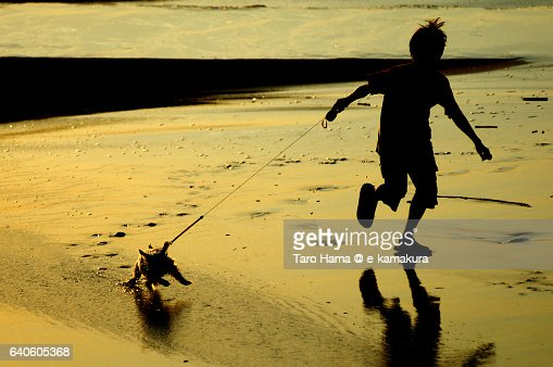 A child running with his dog on the sunset beach : ストックフォト