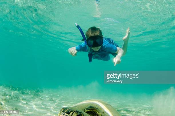 Child seeing a sea turtle for the first time in Hawaii