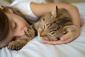 Cat lying on bed with young girl