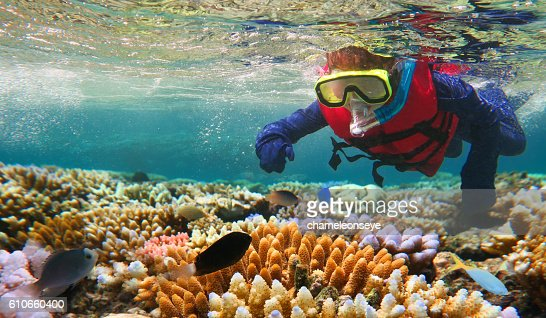 Child snorkeling in Great Barrier Reef Queensland Australia : Stock Photo