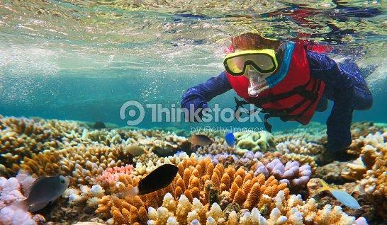 Child snorkeling in Great Barrier Reef Queensland Australia : Stock Photo