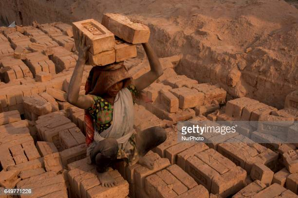 A child unloads a heavy pile of bricks in the Kamduni brick kiln Kamduni West Bengal India 080317 The brick kilns of Bengal employ a large number of...