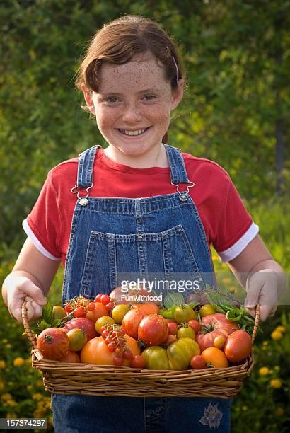 Kind Gemüse-Gärtner mit Eigen-Anbau, Fleischtomate Harvest