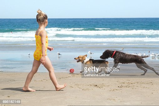 child walking on beach with running dogs