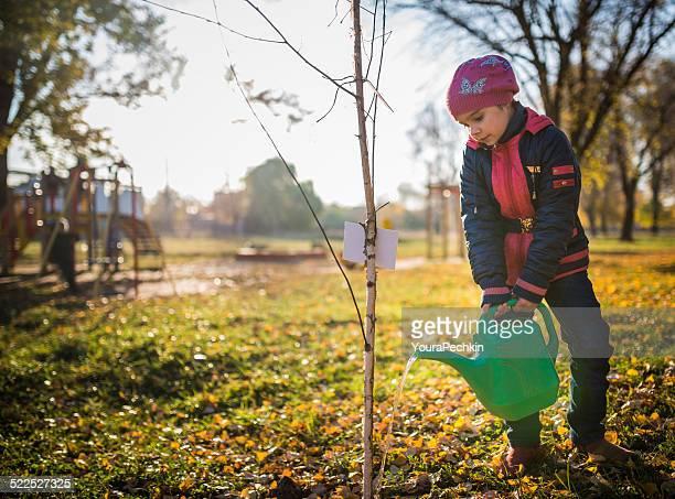 Enfant arroser arbre
