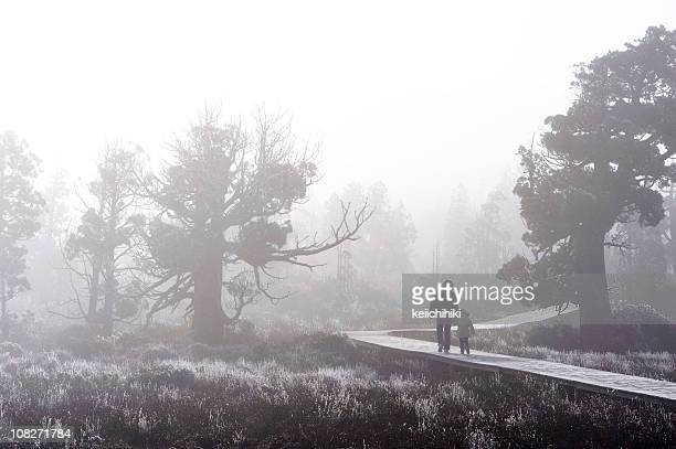 Child with parent in the fog