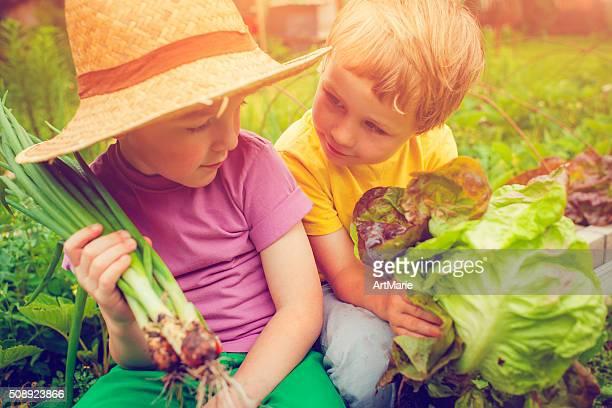 I bambini alla fattoria