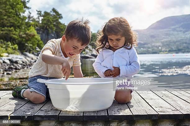 Children catching fish in tub