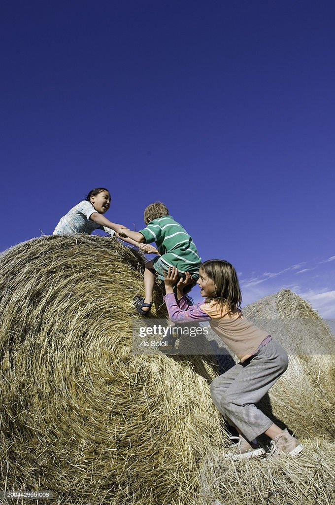 Children (7-13) climbing stack of hay bales : Stock Photo