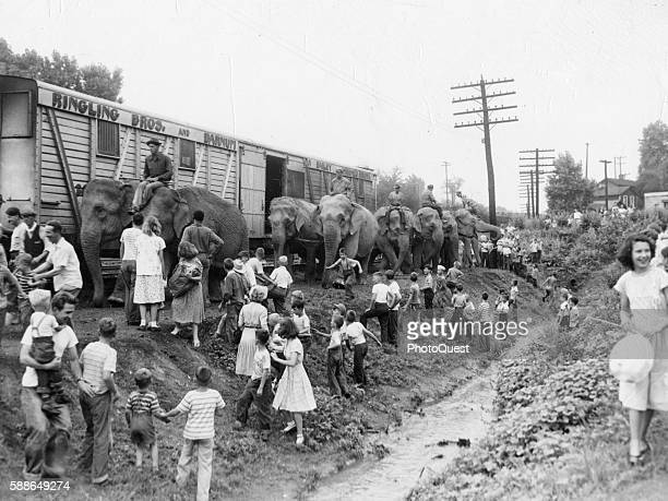 Children cross a ditch to look at RinglingBrothers Circus elephants beside a train 1950