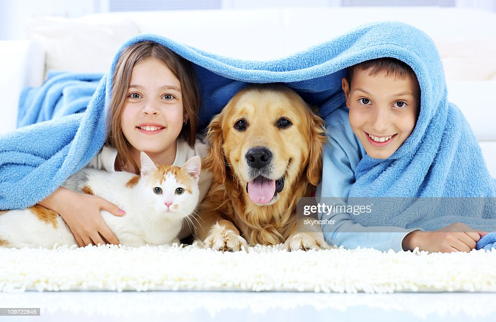 Children, dog and cat looking out the blanket. : Stock Photo