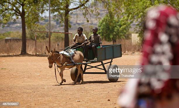 Children driving through a little village with a donkey cart on March 28 in Tienfala Mali