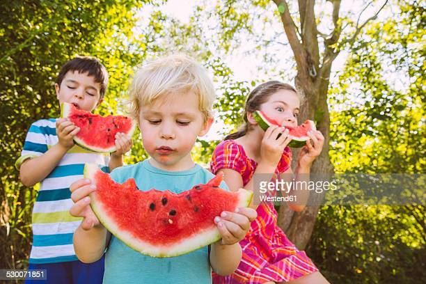 Children eating slices of watermelon in garden