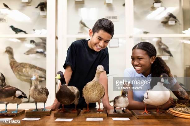 Children examining stuffed ducks in museum