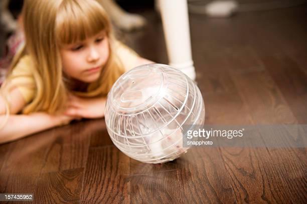 Enfants heureux et fille jouant avec ballon avec Hamster animaux de compagnie