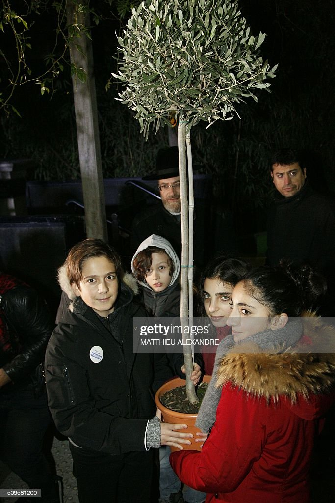 Children hold an olive tree that will be planted in tribute to Ilan Halimi during a ceremony on February 11, 2016 in Paris. The 23-year-old Jewish Frenchman was murdered on February 13, 2006 after he was kidnapped and tortured for three weeks by a gang in a Paris suburb. / AFP / MATTHIEU ALEXANDRE