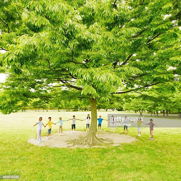 Children Holding Hands Around The Tree
