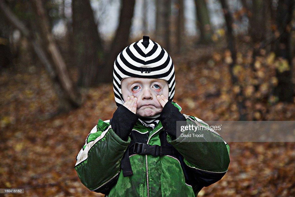 Children in a forest kindergarten in Denmark. : Stock Photo