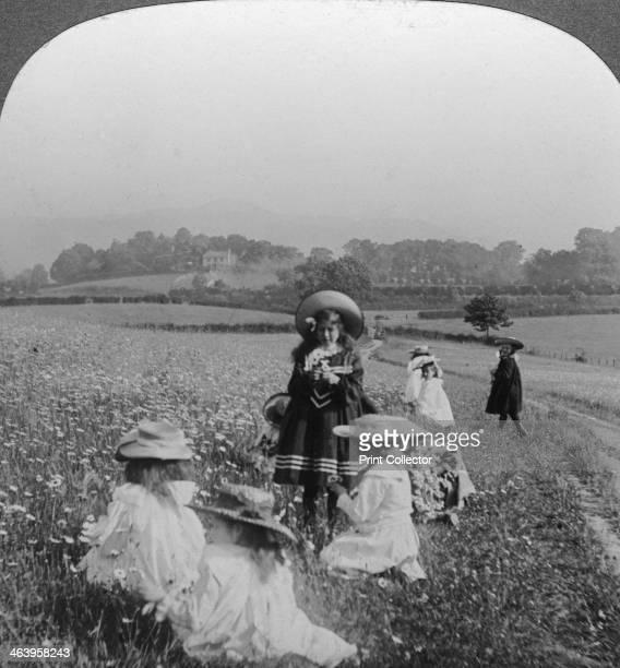 Children in a meadow Keswick Cumbria Stereoscopic card detail