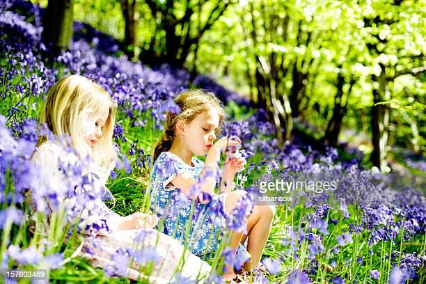 Children in bluebell woods