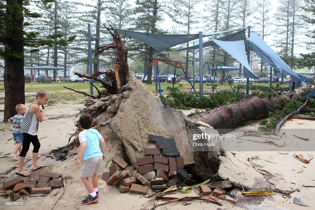 Children look at a fallen tree in Burleigh Heads as Queensland experiences severe rains and flooding from Tropical Cyclone Oswald on January 28, 2013 in Gold Coast, Australia. Hundreds have been evacuated from the towns of Gladstone and Bunderberg while the rest of Queensland braces for more flooding.