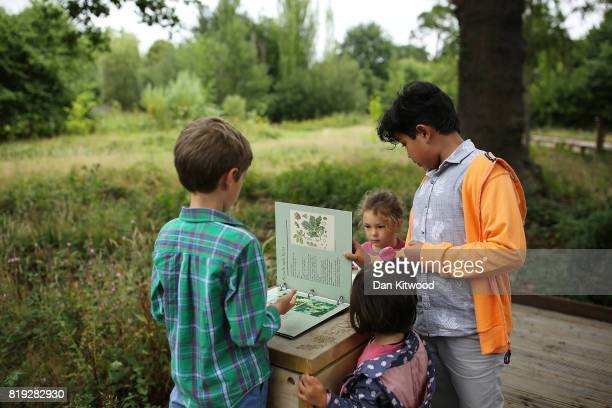 Children look at educational material during a photocall at Kew Gardens on July 20 2017 in London England The Kew Gardens Summer festival includes a...