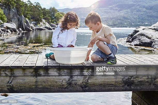 Children looking at fish they caught in a tub