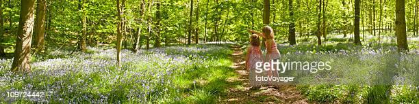 求めのお子様には、自然な夏の森林のパノラマに広がる自然の散歩道