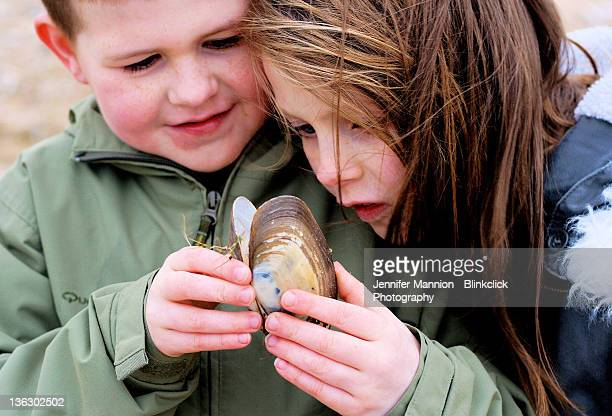 Children looking at shell