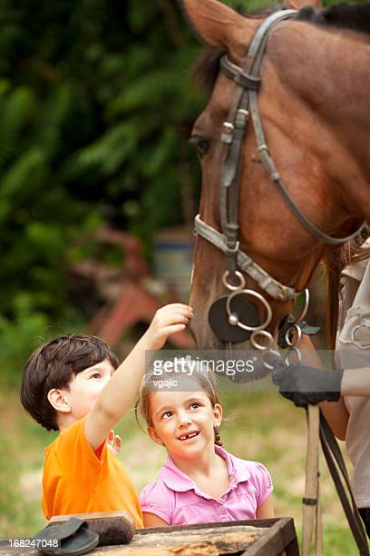 Children Meeting With Horses.