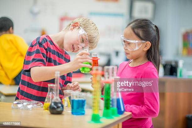 Children Observing in Biology Class