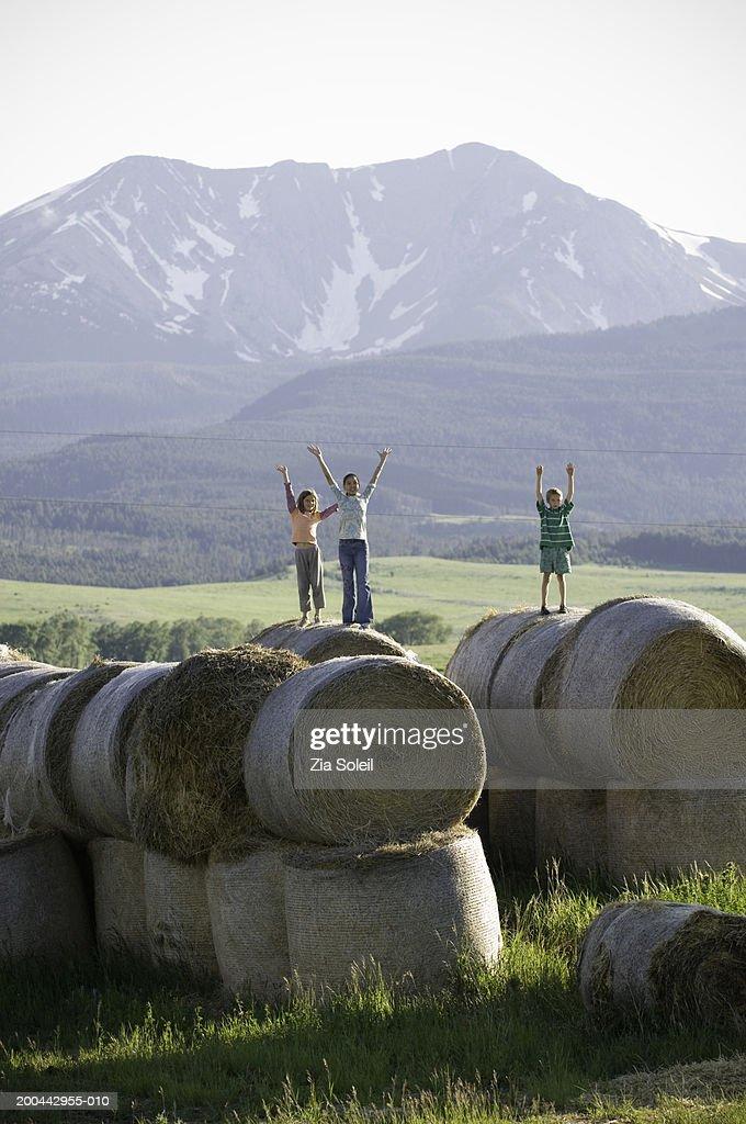 Children (7-13) on hay bales raising arms upwards : Stock Photo