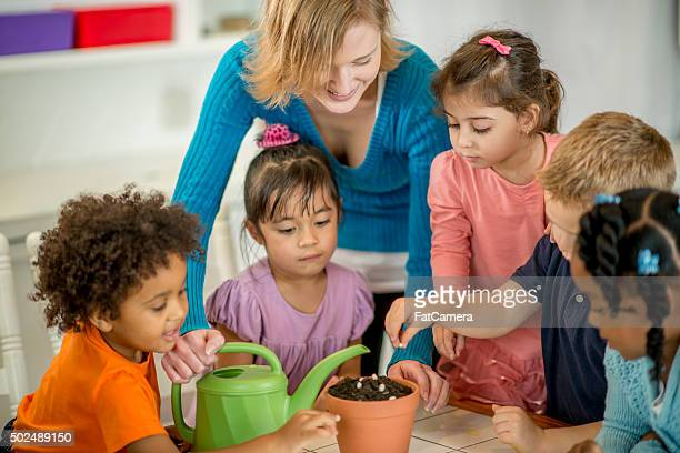 Children Planting Seeds in Class