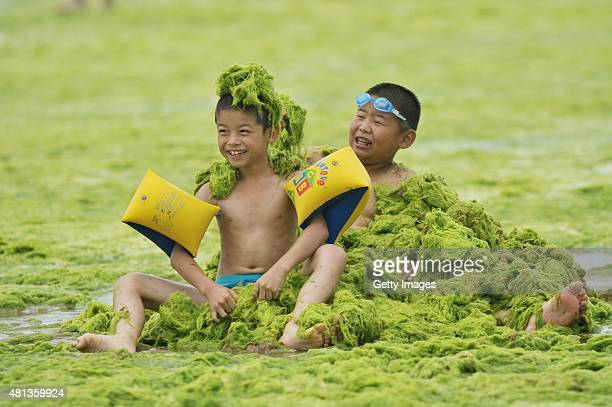 Children play at a beach covered by a thick layer of green algae on July 20 2015 in Qingdao China A large quantity of nonpoisonous green seaweed...
