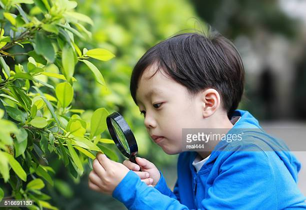 Children play with a magnifying glass