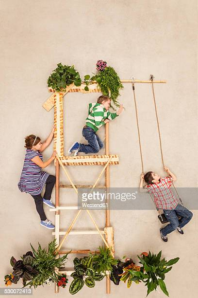 Children playing in tree house