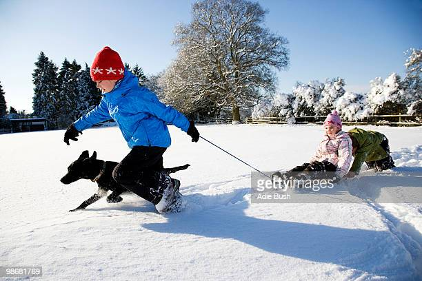 Children playing on sledge in the snow