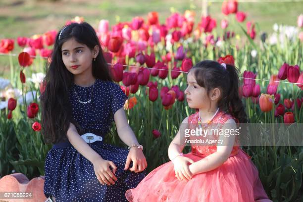 Children pose for a photo in a tulips garden arranged by municipality staff at Azadi Park in Sulaymaniyah Iraq on April 20 2017