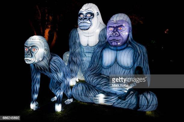Children pose in the Gorillagram installation one of the giant illuminated animal sculptures on display at Taronga Zoo during a media call ahead of...