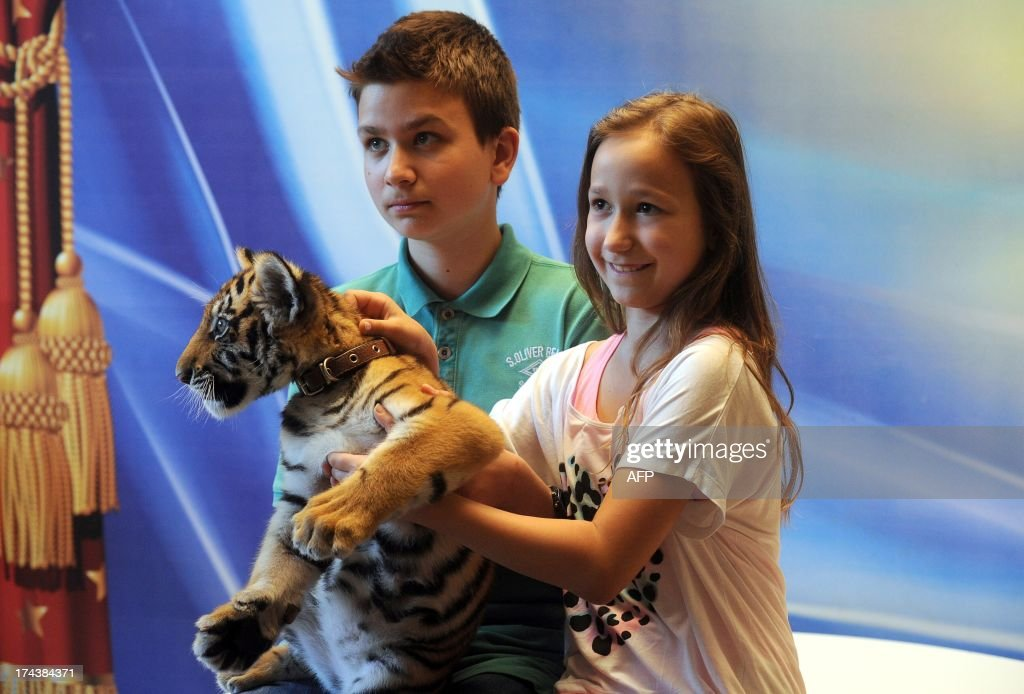 Children pose with a tiger cub at a photo session during a show intermission in Moscow circus on Tsvetnoy Boulevard late on July 24, 2013 .