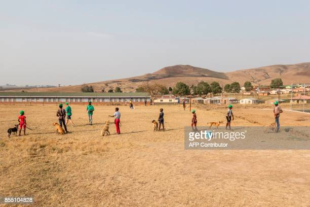 Children prepare to carry out a training excercise with their dogs on September 22 2017 at the Zamuthule Primary School in the Mpophomeni township of...