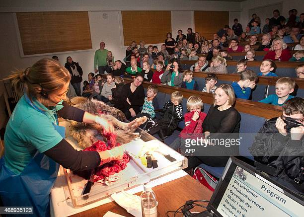 Children react to the smell as the Natural History Museum dissected a wolf from a nearby wildlife park as a part of their winter holiday activities...